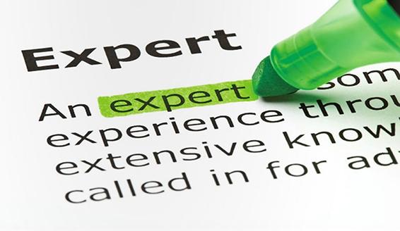 Expert Report